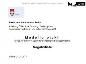 Negativliste-21-01-2011
