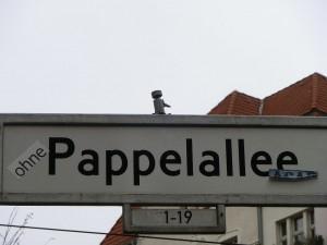 Straßenschild Pappelallee